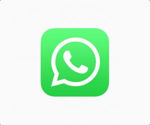WhatsApp API Logo